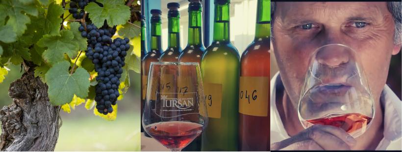 vin de Tursan des landes du sudouest